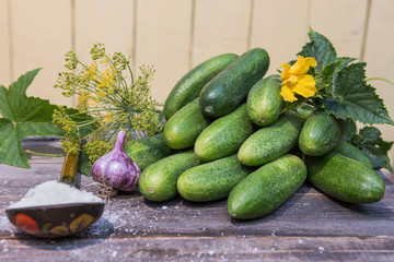 plucked cucumbers and ingredients for their salting