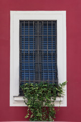 Windows with iron bars