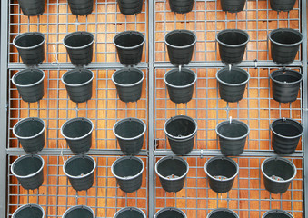 Row of black flower pot on wall
