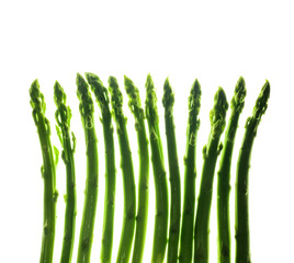Asparagus against white background