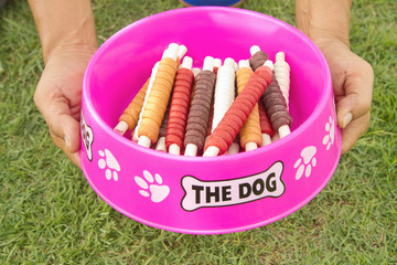 Man's hand holding  a bowl of dog treats ( Dog Chews, Snack)
