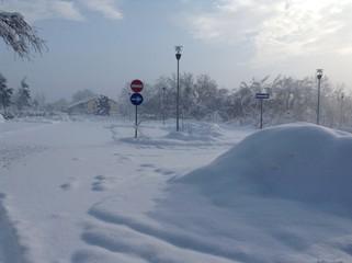 neve bianca