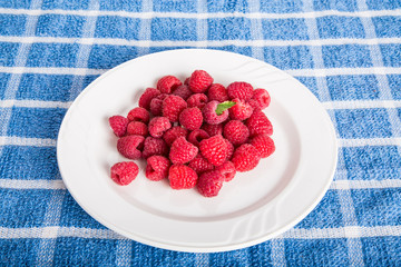 Green Leaf on Plate of Red Raspberries