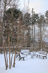 outdoor garden in winter season