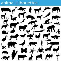 Verschiedene Tier-Silhouetten