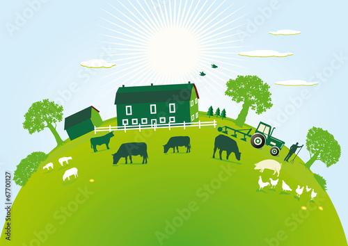 grüner Bauernhof - 67700127