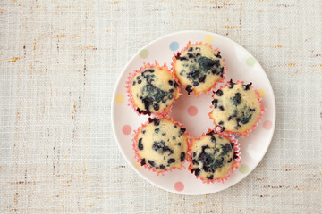 Homemade blueberry muffins in paper cupcake holder
