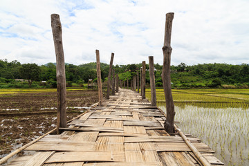 bridge across rice field white cloud