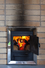 The wood stove with burning firewood