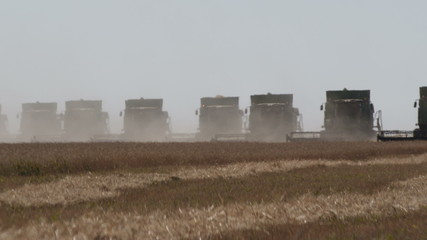 Harvesters move simultaneously on the horizon