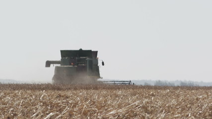 The large vehicle harvests corn in hot weather