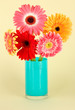 Beautiful Gerber flowers on light background