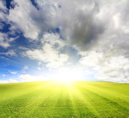 sunny green hill with grass under sky