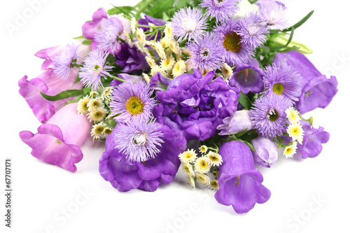 Foto op Canvas Lilac Beautiful wild flowers isolated on white
