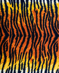 texture of tiger fabric stripes