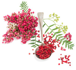 pink peppercorn in a spoon