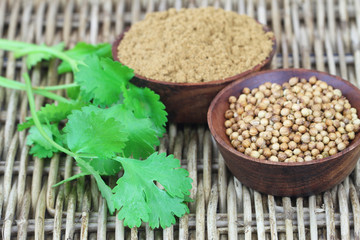Coriander seeds, coriander powder and fresh coriander on wicker