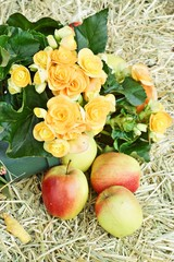 flowers and apple on hay