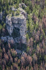 aerial view of the black hills