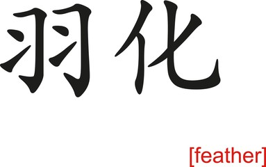 Chinese Sign for feather