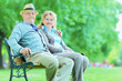 Mature couple posing in park seated on bench