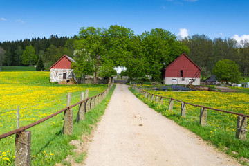 Spring road to the Swedish farm