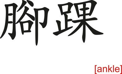 Chinese Sign for ankle