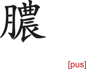 Chinese Sign for pus