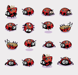 Collection of 16 Lady Bug Vector