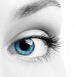 Close-up macro image of human eye