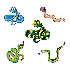 Illustration of a Group of Snakes
