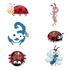 Insect Vector Collection