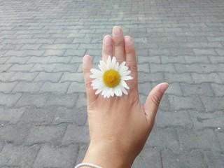 Flower between fingers.