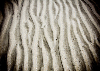 Wave line pattern in beach sand