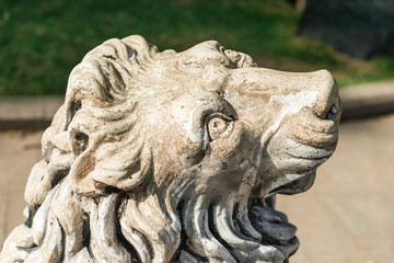 Lions face  in Gulhane Park, Istanbul