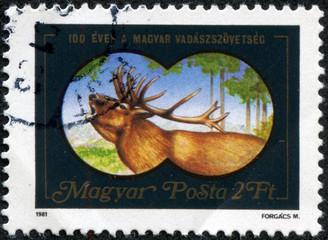 stamp shows the image of deer through binoculars