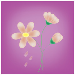 vector flowers on the purple background