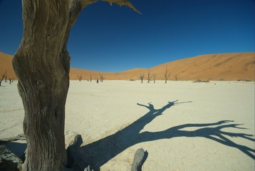 Shadows of Dead Vlei