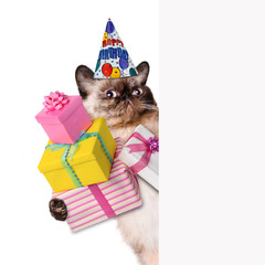 Birthday cat .