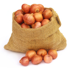 Sack with onion