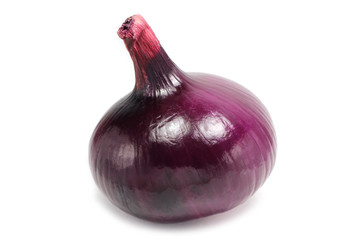 head of red onion on white background