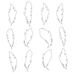 Collection of white feathers. Raster
