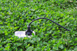 electric power receptacle on a green grass background