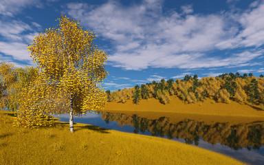 Birch on a pond in autumn.