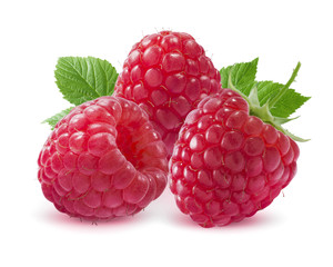 Three raspberries isolated on white background