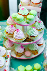 Colored cupcakes. Muffins with cream. Colorful macarons