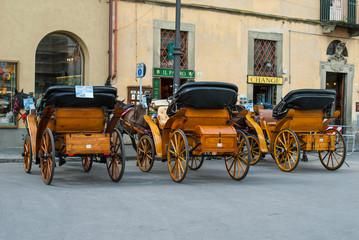 Carrozze tirata da cavallo, Pisa