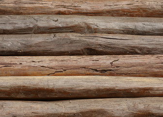wood logs for industry