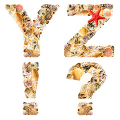 Letter Y Z ! ? made of seashells and sand