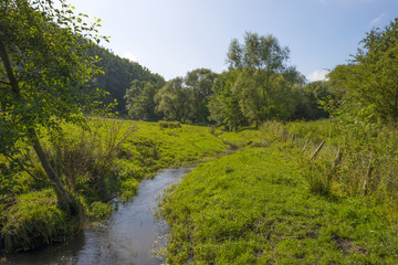 Stream meandering through a hilly landscape
